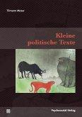 Kleine politische Texte (eBook, PDF)