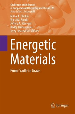 Energetic Materials: From Cradle to Grave: 25 (Challenges and Advances in Computational Chemistry and Physics)