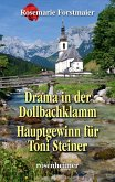 Drama in der Dollbachklamm / Hauptgewinn für Toni Steiner (eBook, ePUB)
