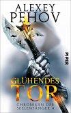 Glühendes Tor / Chroniken der Seelenfänger Bd.4 (eBook, ePUB)