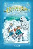 Abenteuer in der Eiswüste / Krypteria - Jules Vernes geheimnisvolle Insel Bd.5