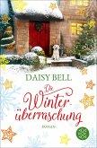 Die Winterüberraschung (eBook, ePUB)