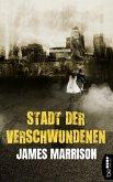 Stadt der Verschwundenen (eBook, ePUB)
