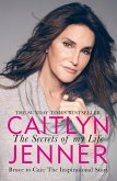 The Secrets of My Life (eBook, ePUB)