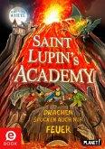 Drachen spucken auch nur Feuer / Saint Lupin's Academy Bd.2 (eBook, ePUB)