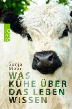 Was Kühe über das Leben wissen