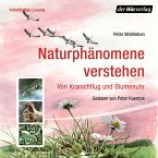 Naturphänomene verstehen (MP3-Download)