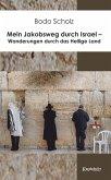 Mein Jakobsweg durch Israel - Wanderungen durch das Heilige Land (eBook, ePUB)