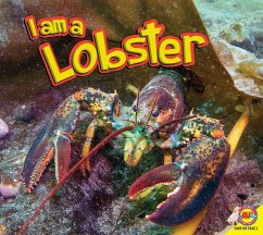 I Am a Lobster - Siemens, Jared