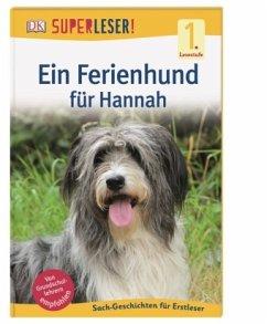 SUPERLESER! Ein Ferienhund für Hannah / Superleser 1. Lesestufe Bd.5