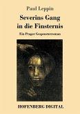 Severins Gang in die Finsternis (eBook, ePUB)
