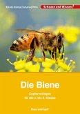 Die Biene - Kopiervorlagen für die 2. bis 4. Klasse