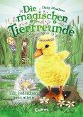 Fibi Federchen ganz allein / Die magischen Tierfreunde Bd.3