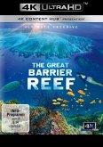 The Great Barrier Reef - Ultimate Freedive (4K Ultra HD)