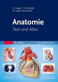 Anatomie - Lippert, Herbert; Herbold, Desiree; Lippert-Burmester, Wunna