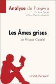 Les Âmes grises de Philippe Claudel (Analyse de l'oeuvre) (eBook, ePUB)