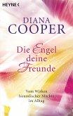 Die Engel, deine Freunde (eBook, ePUB)