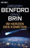 Im Herzen des Kometen (eBook, ePUB)