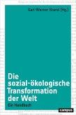 Die sozial-ökologische Transformation der Welt (eBook, PDF)