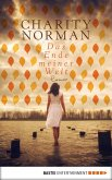 Das Ende meiner Welt (eBook, ePUB)
