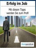 Erfolg im Job (eBook, ePUB)