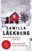 Die Eisprinzessin schläft & Der Prediger von Fjällbacka / Erica Falck & Patrik Hedström Bd.1+2