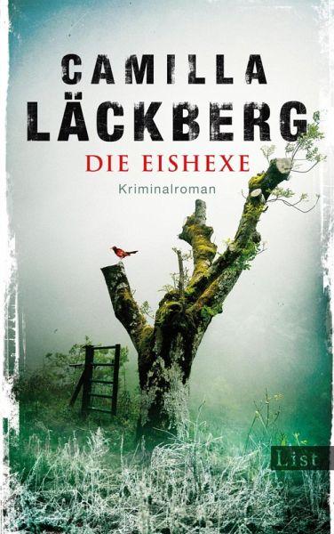 Die Eishexe / Erica Falck & Patrik Hedström Bd.10 (eBook, ePUB)