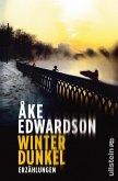 Winterdunkel (eBook, ePUB)