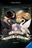 Es kann nur eine geben & Eine Welt ohne Prinzen & Und wenn sie nicht gestorben sind / The School for Good and Evil Bd.1-3