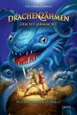 Wilde Piraten voraus! / Drachenzähmen leicht gemacht Bd.2 (Mängelexemplar)