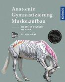 Anatomie, Gymnastizierung, Muskelaufbau (eBook, PDF)