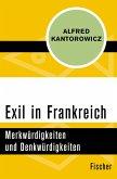 Exil in Frankreich (eBook, ePUB)