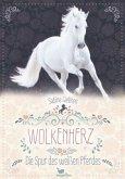 Die Spur des weißen Pferdes / Wolkenherz Bd.1