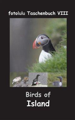 Birds of Island - fotolulu
