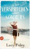 Das Versprechen eines Sommers (eBook, ePUB)