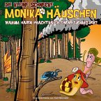 Warum haben Prachtkäfer einen Feuermelder?, 1 Audio-CD / Die kleine Schnecke, Monika Häuschen, Audio-CDs Tl.48