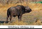 Wildtiere Afrikas 2018
