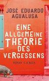 Eine allgemeine Theorie des Vergessens (eBook, ePUB)