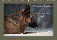 Faszinierende Augenblicke mit dem Deutschen Schäferhund (Wandkalender 2018 DIN A2 quer) Dieser erfolgreiche Kalender wurde dieses Jahr mit gleichen Bildern und aktualisiertem Kalendarium wiederveröffentlicht.