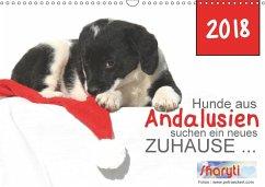 Hunde aus Andalusien suchen ein neues Zuhause ... (Wandkalender 2018 DIN A3 quer)