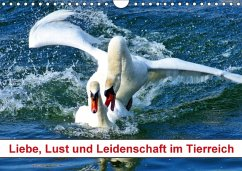 Liebe, Lust und Leidenschaft im Tierreich (Wandkalender 2018 DIN A4 quer) Dieser erfolgreiche Kalender wurde dieses Jahr mit gleichen Bildern und aktualisiertem Kalendarium wiederveröffentlicht.