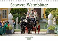 Schwere Warmblüter 2018 (Wandkalender 2018 DIN ...