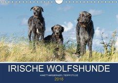 Irische Wolfshunde (Wandkalender 2018 DIN A4 quer) Dieser erfolgreiche Kalender wurde dieses Jahr mit gleichen Bildern und aktualisiertem Kalendarium wiederveröffentlicht.