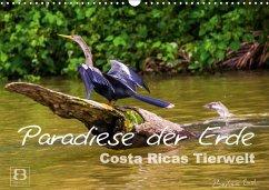 Paradiese der Erde: Costa Ricas Tierwelt (Wandkalender 2018 DIN A3 quer) Dieser erfolgreiche Kalender wurde dieses Jahr mit gleichen Bildern und aktualisiertem Kalendarium wiederveröffentlicht.