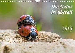 Die Natur ist überall (Wandkalender 2018 DIN A4 quer) Dieser erfolgreiche Kalender wurde dieses Jahr mit gleichen Bildern und aktualisiertem Kalendarium wiederveröffentlicht.