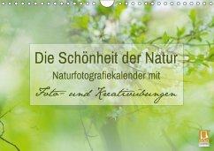 Die Schönheit der Natur - Naturfotografie-Kalender mit Foto- und Kreativübungen (Wandkalender 2018 DIN A4 quer) Dieser erfolgreiche Kalender wurde dieses Jahr mit gleichen Bildern und aktualisiertem Kalendarium wiederveröffentlicht.