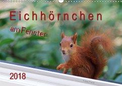 Eichhörnchen am Fenster (Wandkalender 2018 DIN A3 quer) Dieser erfolgreiche Kalender wurde dieses Jahr mit gleichen Bildern und aktualisiertem Kalendarium wiederveröffentlicht.