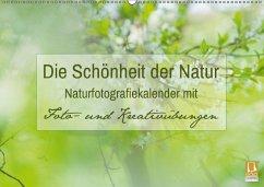 Die Schönheit der Natur - Naturfotografie-Kalender mit Foto- und Kreativübungen (Wandkalender 2018 DIN A2 quer) Dieser e - Mänz, Jana