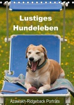 Lustiges Hundeleben - Azawakh Ridgeback Porträts (Tischkalender 2018 DIN A5 hoch) Dieser erfolgreiche Kalender wurde dieses Jahr mit gleichen Bildern und aktualisiertem Kalendarium wiederveröffentlicht.