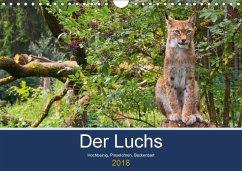 Der Luchs - Hochbeinig, Pinselohren, Backenbart (Wandkalender 2018 DIN A4 quer) Dieser erfolgreiche Kalender wurde dieses Jahr mit gleichen Bildern und aktualisiertem Kalendarium wiederveröffentlicht.